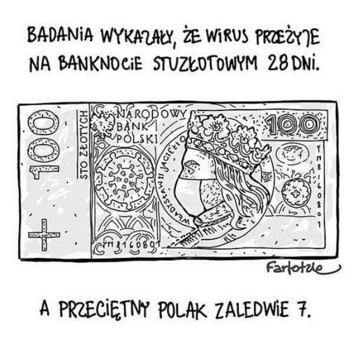 Polish dream